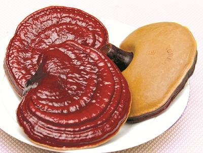 Bột nấm linh chi đỏ