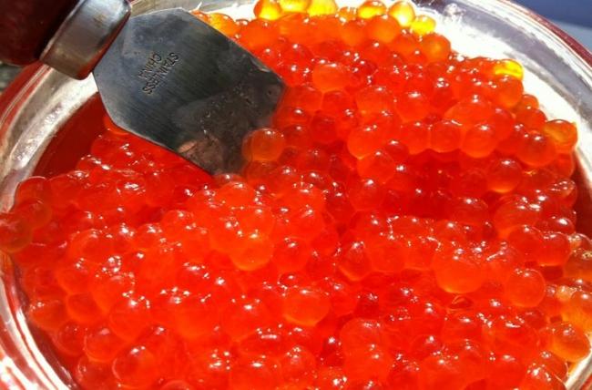 trứng cá hồi