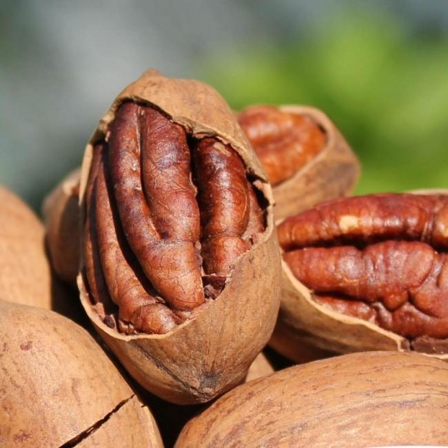 hạt hoog đào